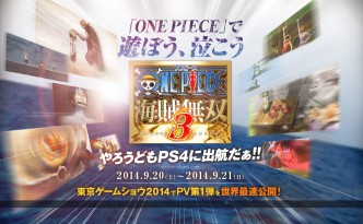 One_Piece_Pirate_Warriors_3